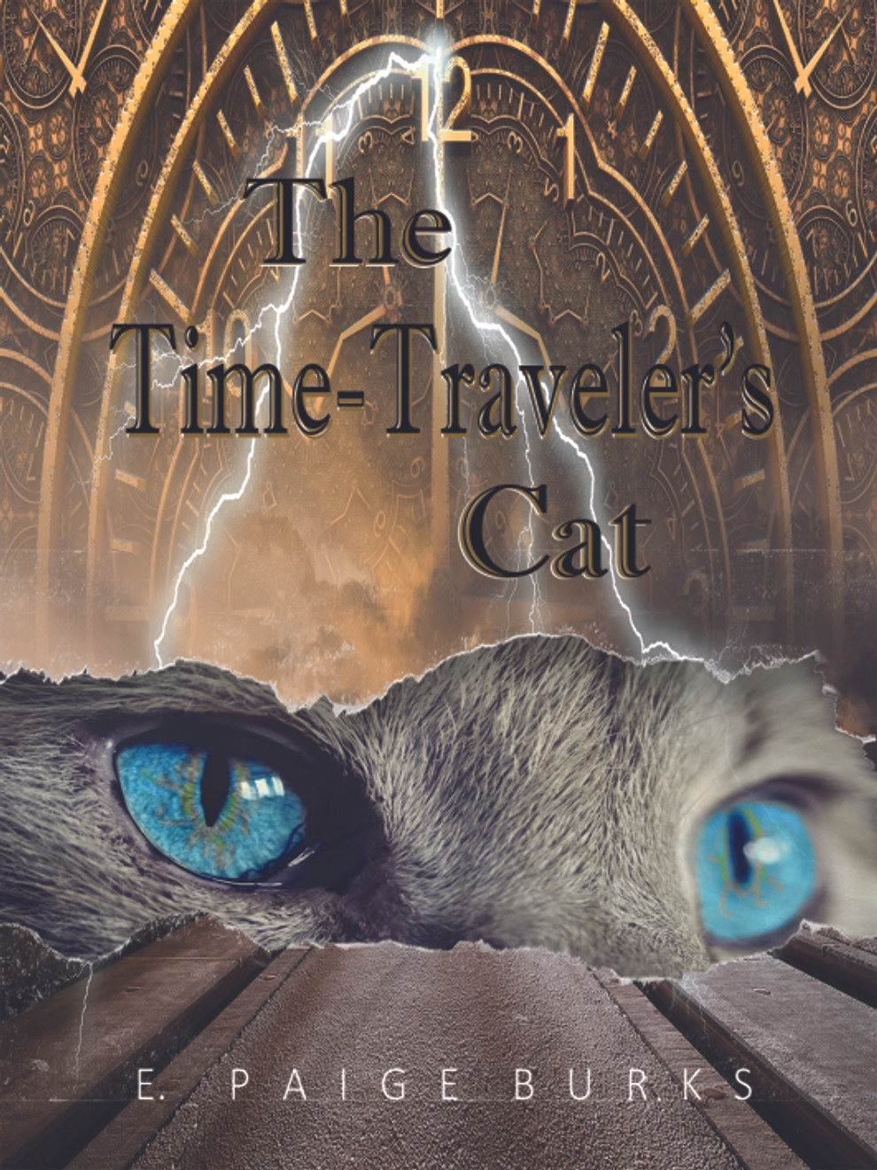 Time Travelers Cat Cover Small.jpg