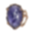 Purple ring on white.png