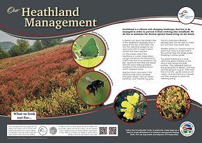 3 Heathland 3mm.jpg