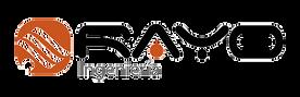 logo_rayoing.png
