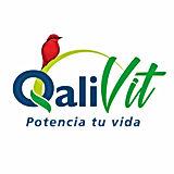 Logo Qalivit.jpg