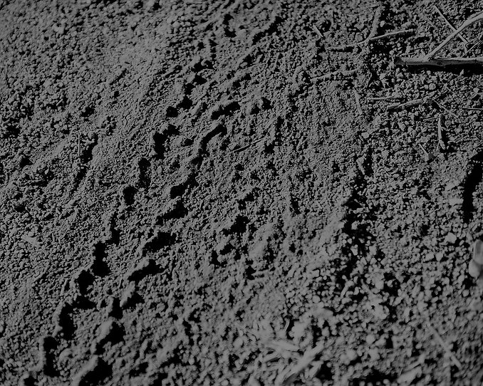 tire-tracks-390179_1280.jpg