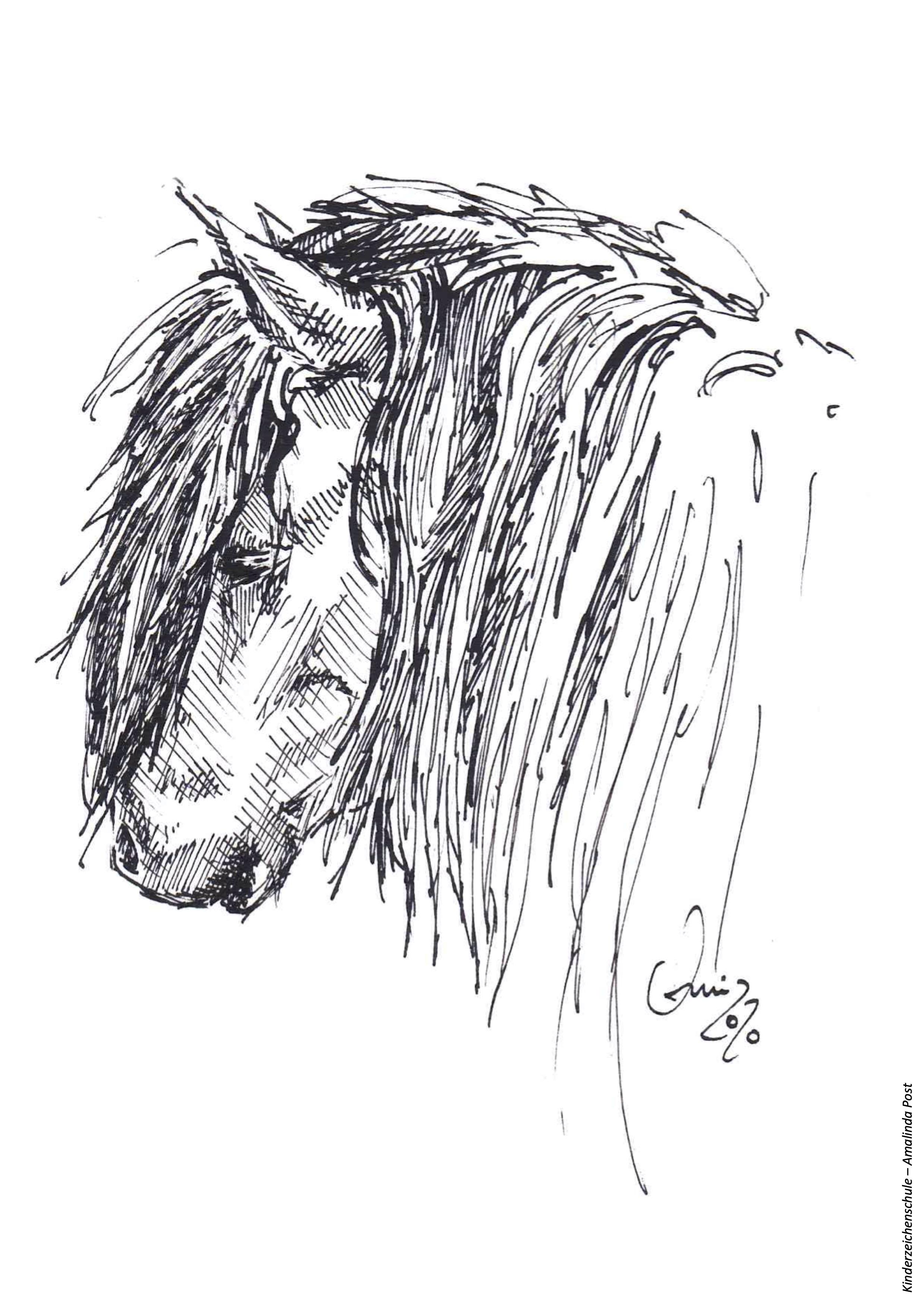 Ausmalbild Kopf von Pferd mit Mähne