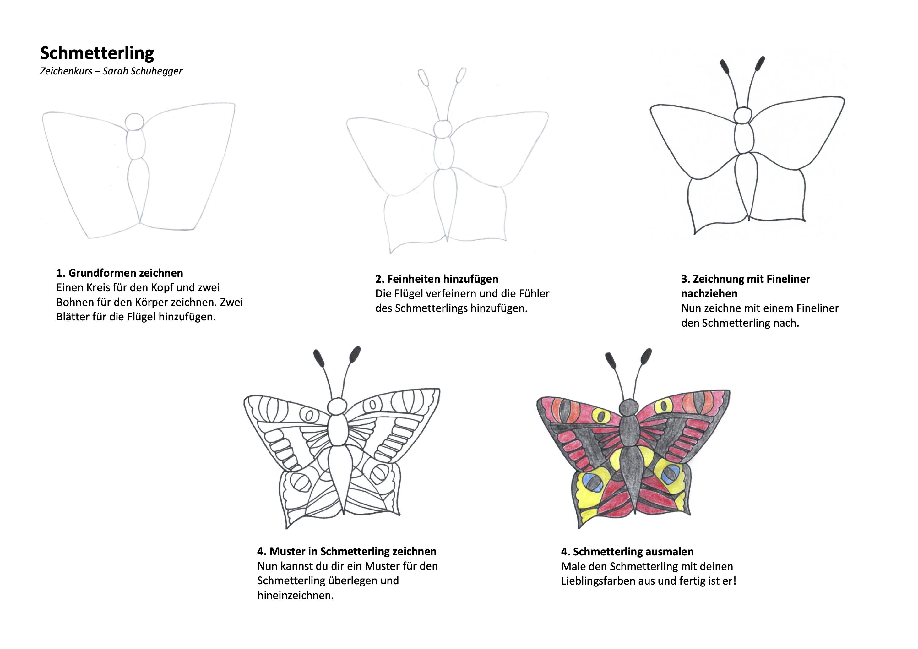 Schmetterling Zeichenanleitung