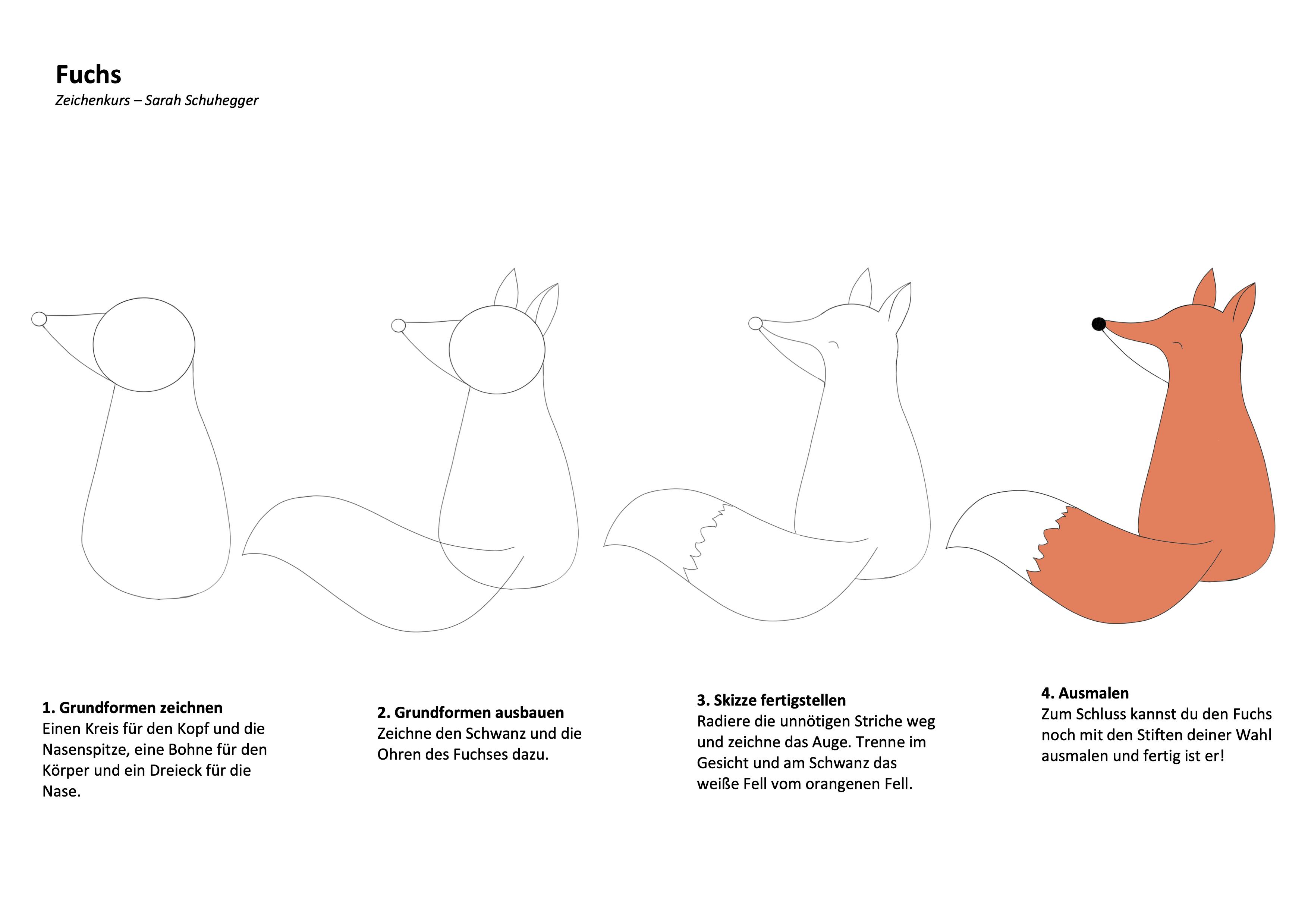 Fuchs Zeichenanleitung
