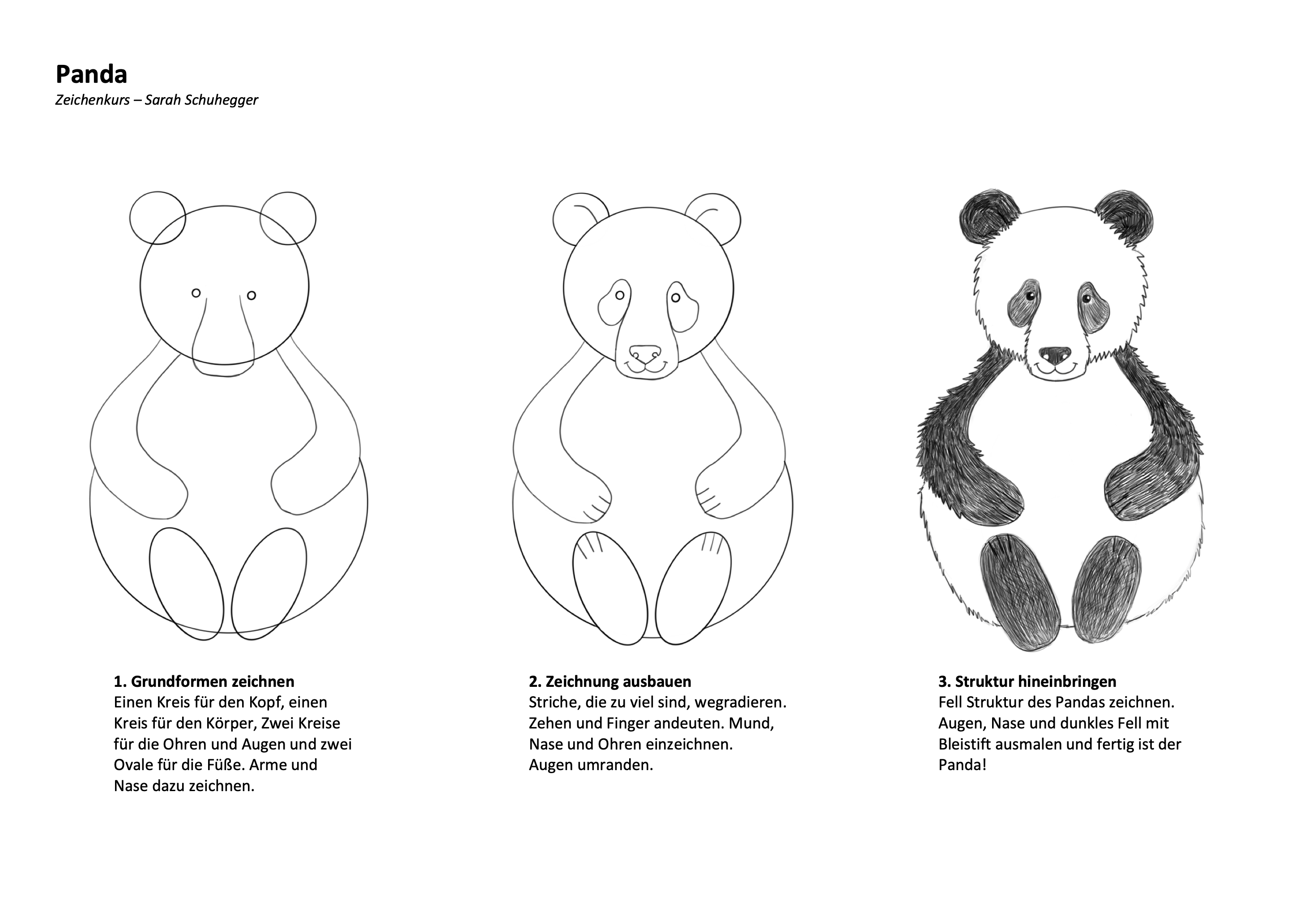 Panda Zeichenanleitung