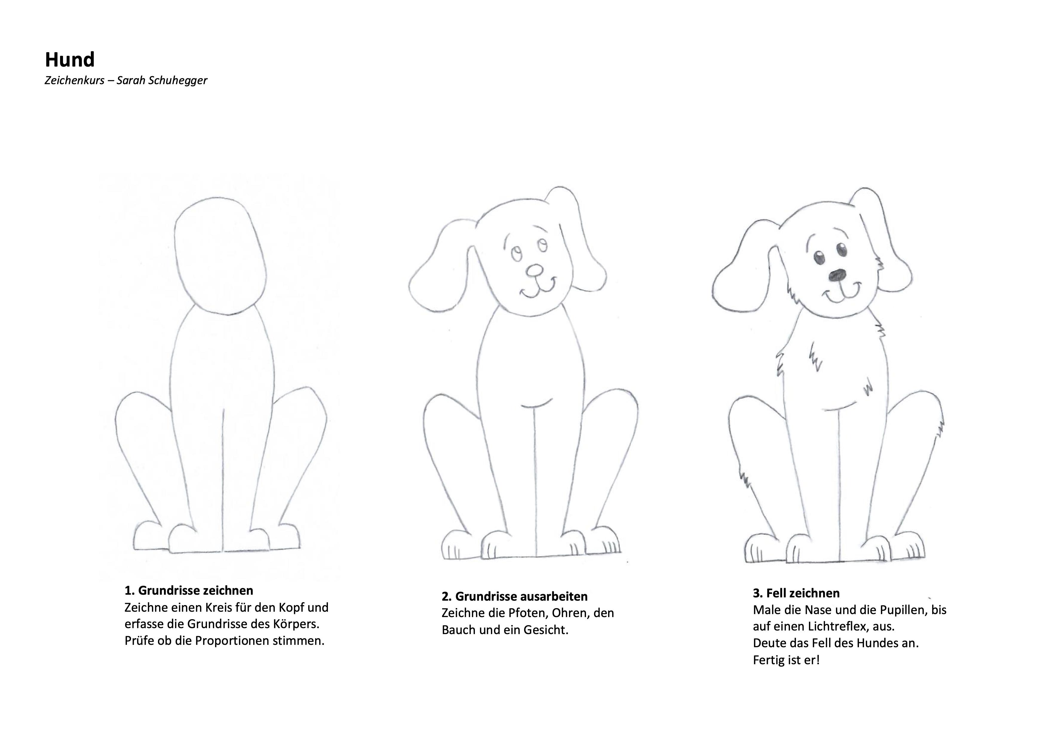 Hund Zeichenanleitung