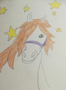 Sophias Pferd mit Sternen