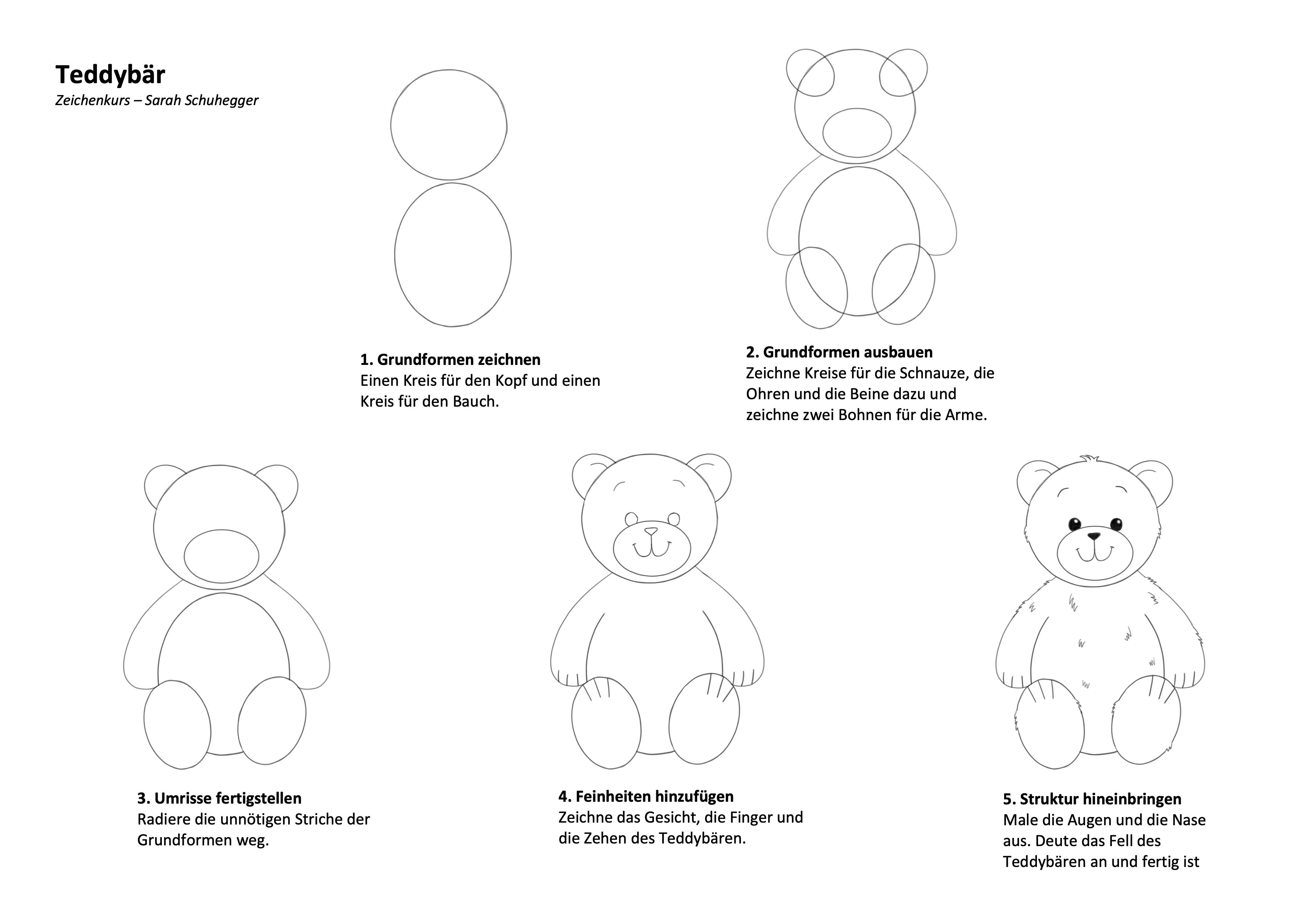 Teddybär Zeichenanleitung