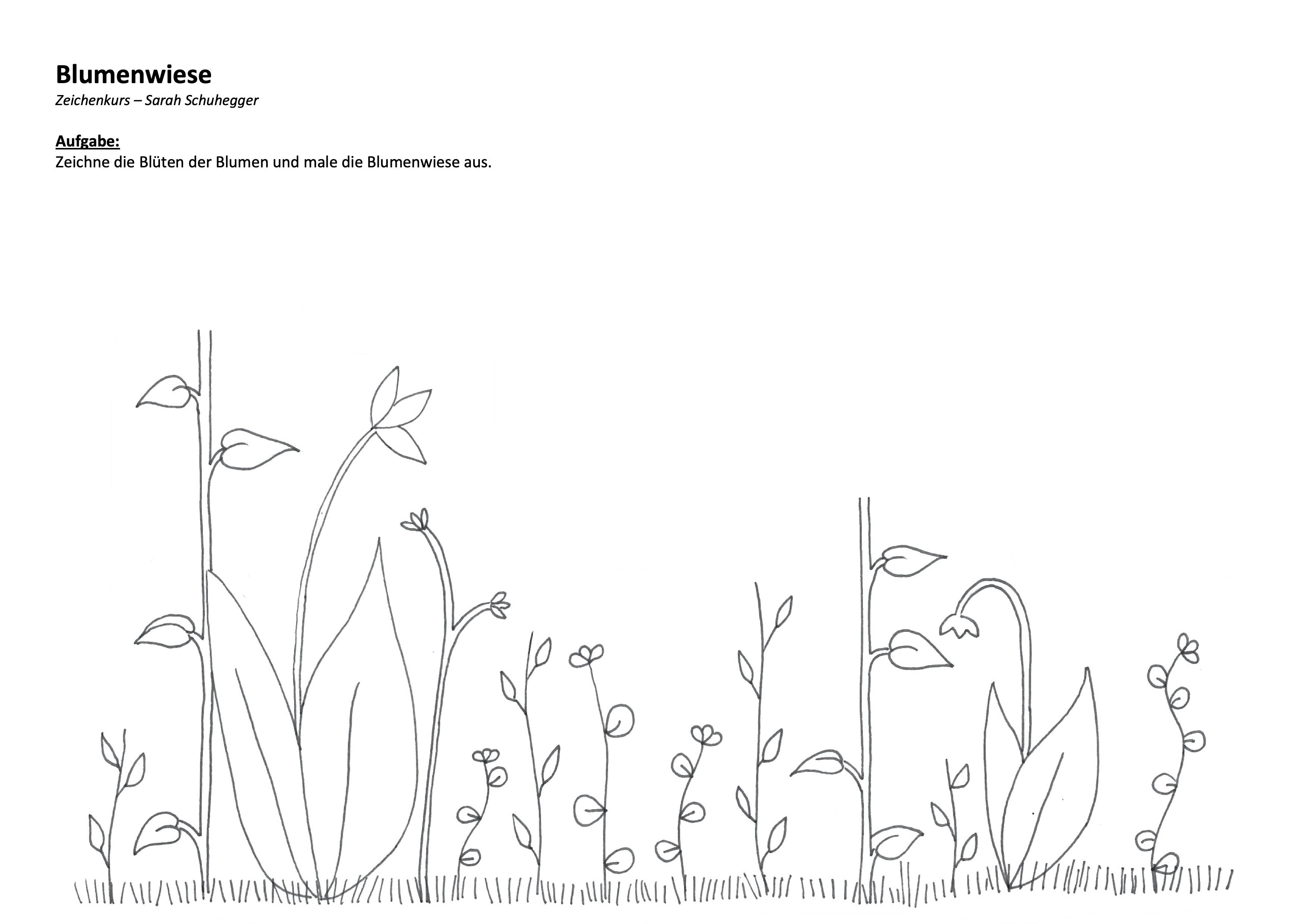 Blumenwiese zeichnen
