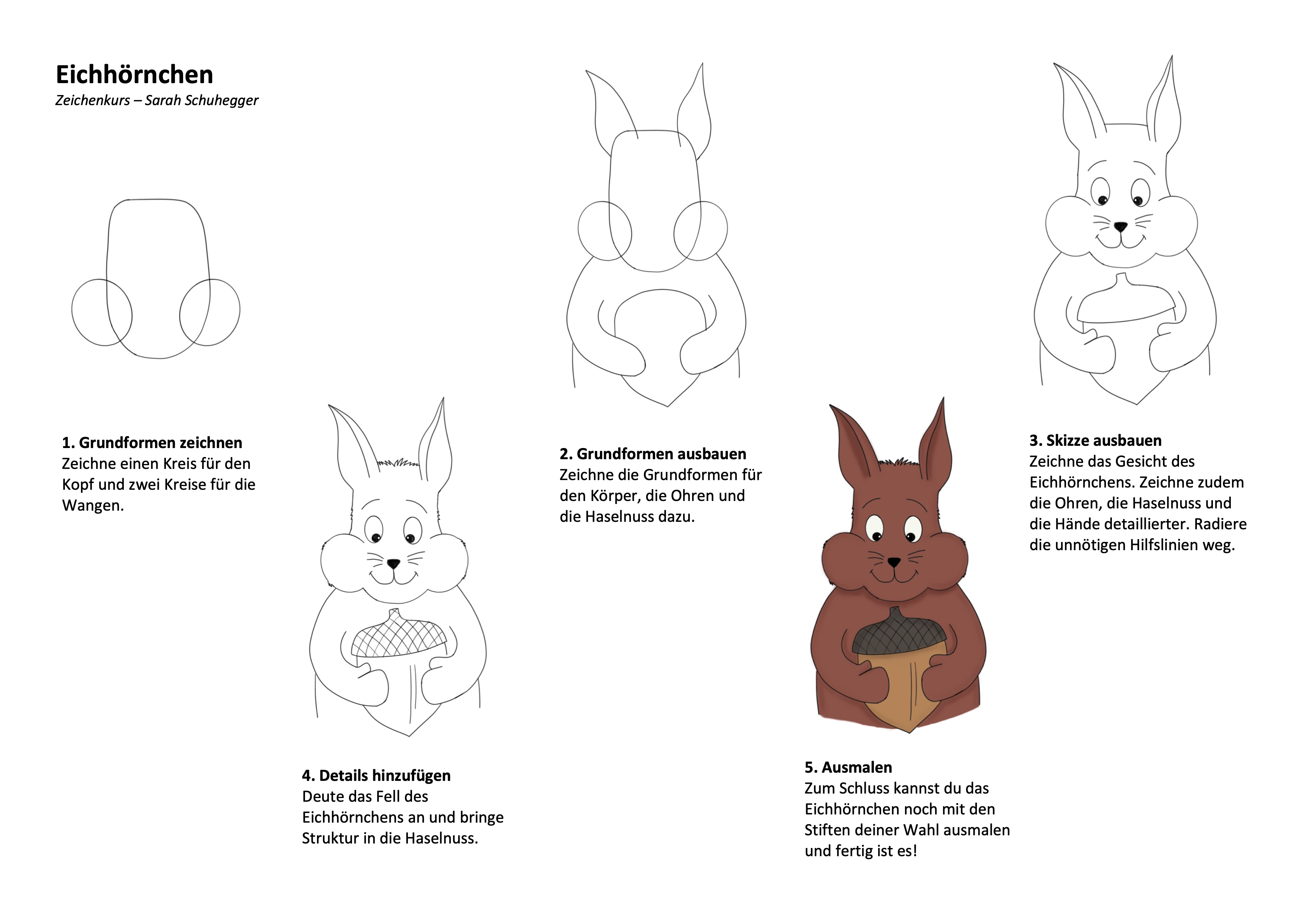 Eichhörnchen Zeichenanleitung