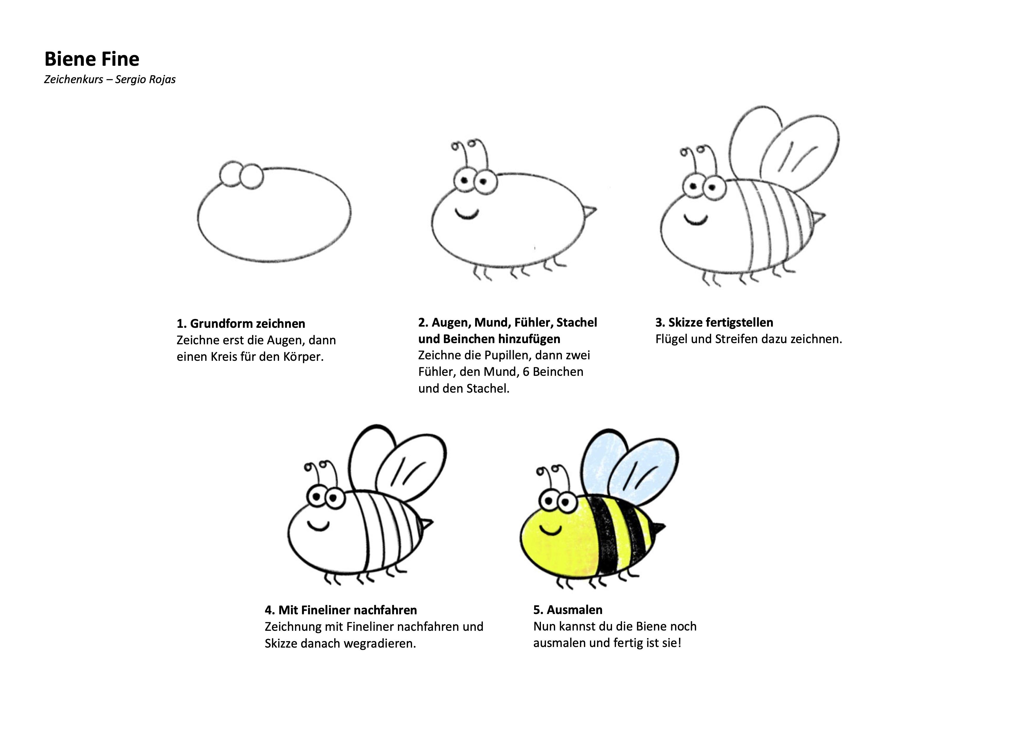 Biene Zeichenanleitung