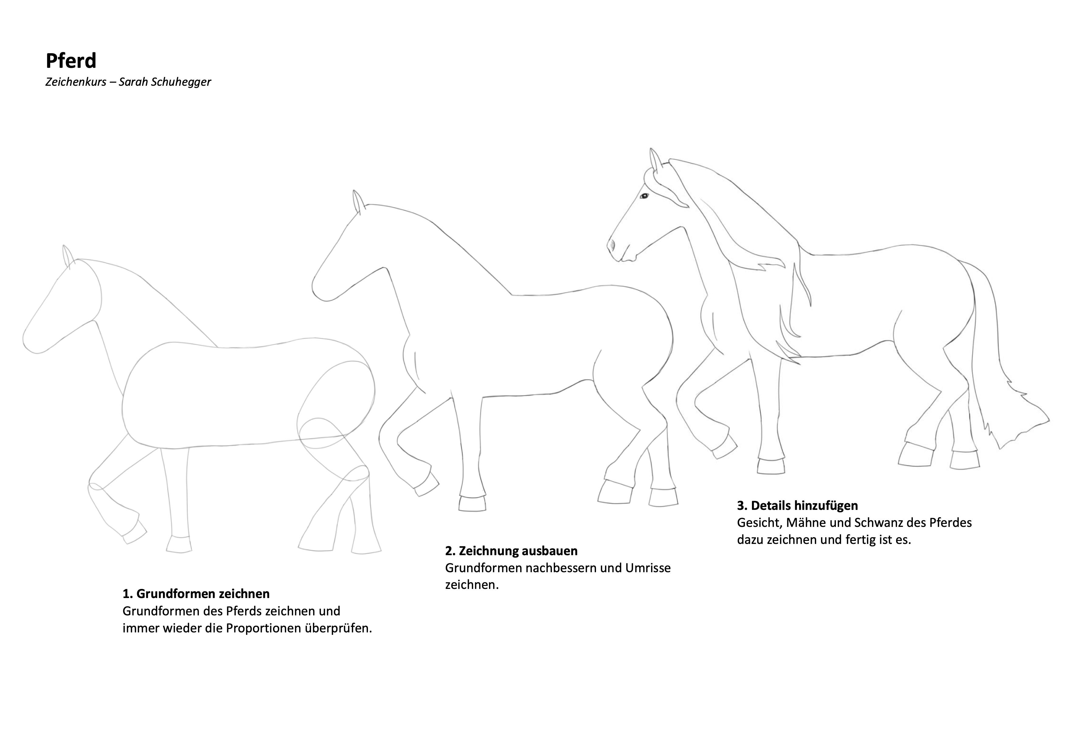 Pferd Zeichenanleitung