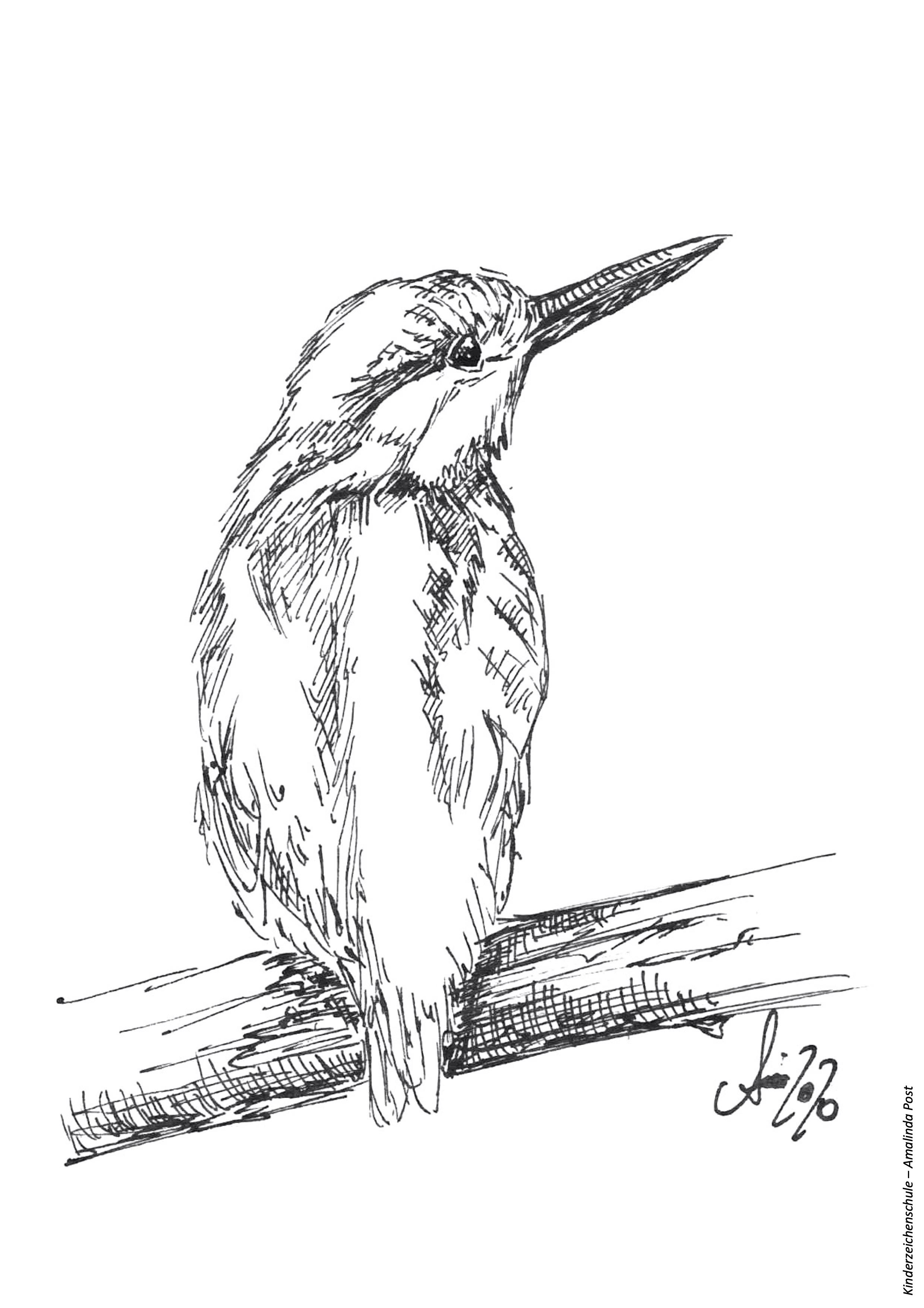 Ausmalbild Vogel