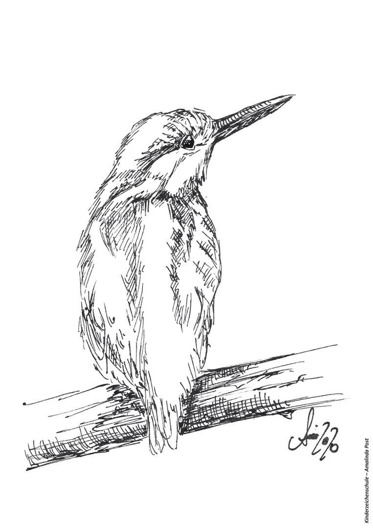 Vogel Ausmalbild