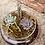 Thumbnail: Succulent & Cactus Terrarium