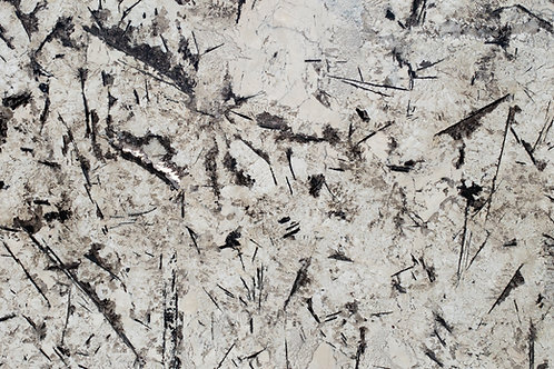 Mystic Spring 2 | Granite