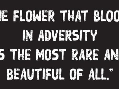 In Every Adversity Lie Seeds of Wisdom