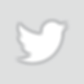 Twitter_Logo_White_On_Image.png
