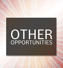 Other Opportunities Graphic