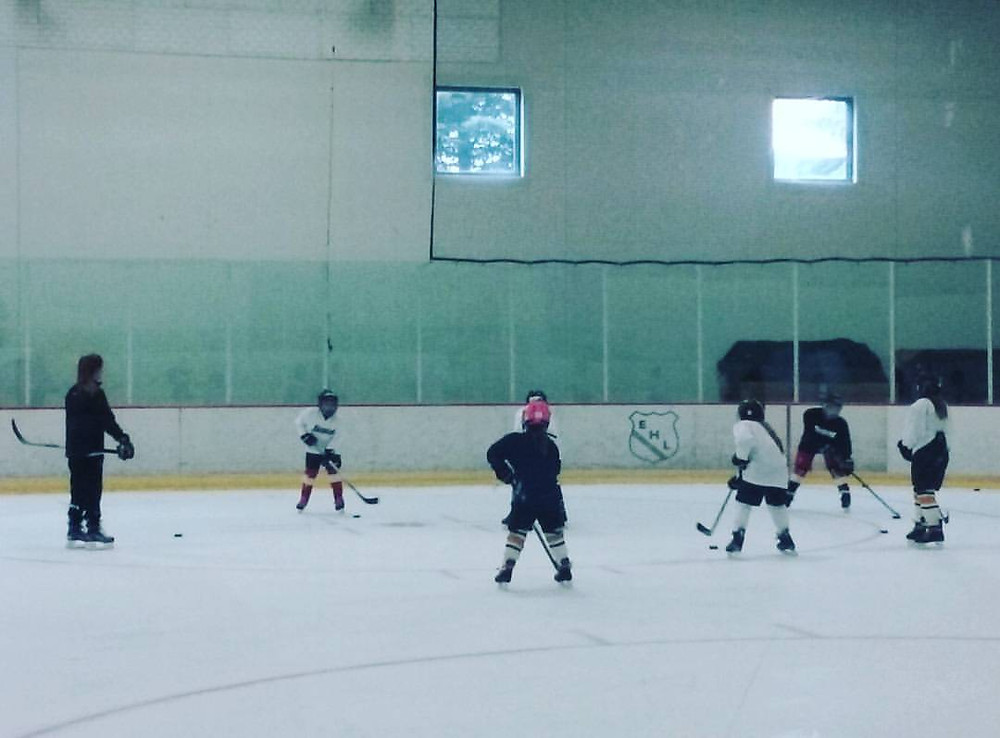 Improve Your Puck Skills by joining Fusion Training All Day Summer Camp