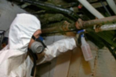 asbestos-removal-castleandkeepflickr-sta
