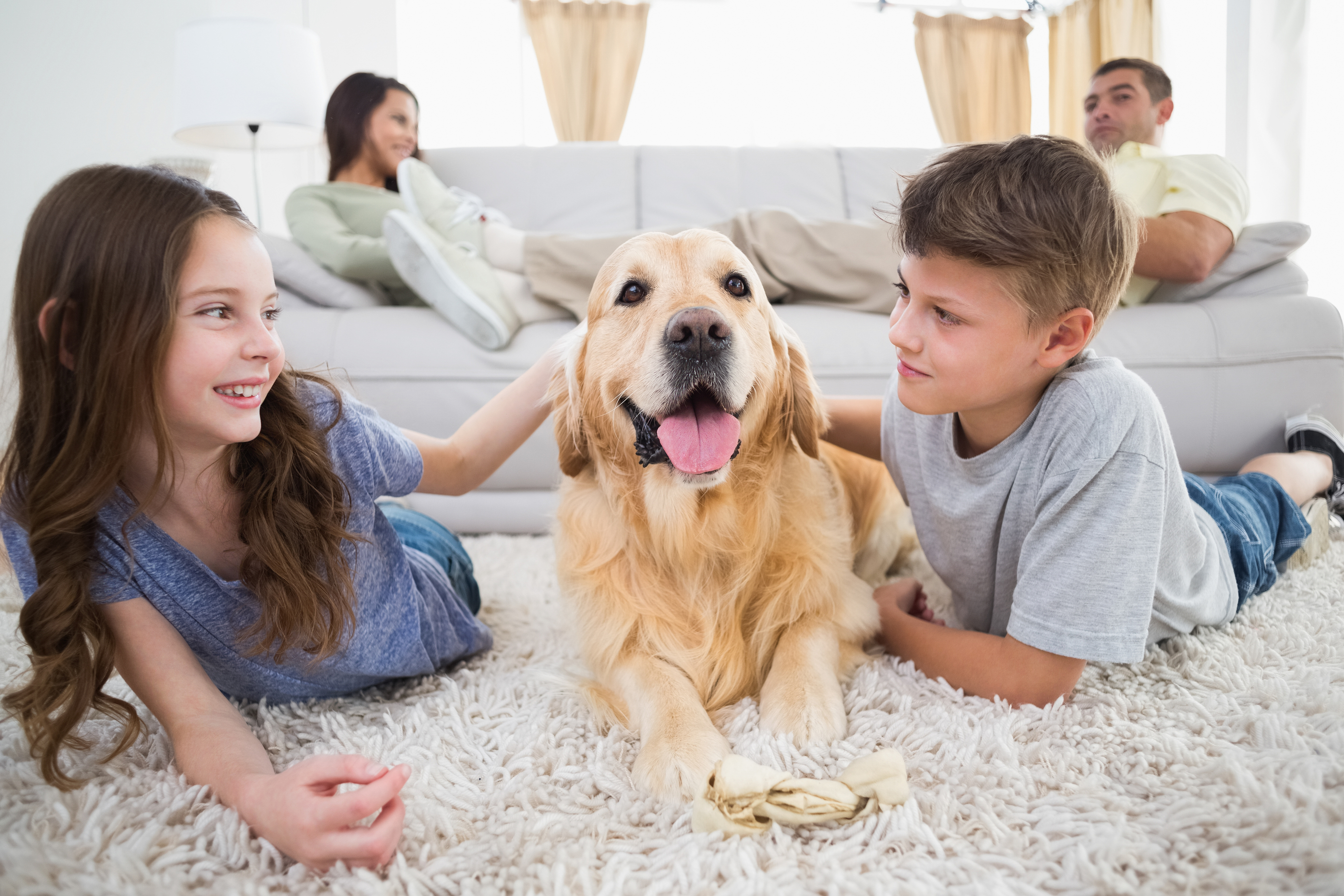 Cute siblings stroking dog on rug while parents relaxing on sofa at home