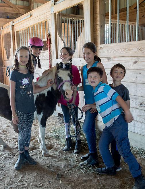Pony Kate Nickles, Little Red Barn, Sufolk, North Fork, Long Island, Riding, Horseback, Camp