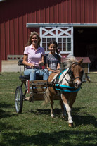 Pony vart Ride at The Little Red Barn