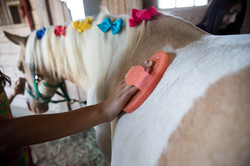 Groom Ribbons The Little Red Barn