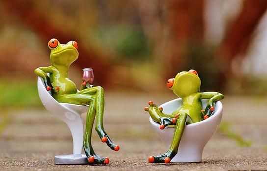 frog-1234571_1920.jpg