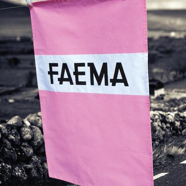 Faema T-Towel