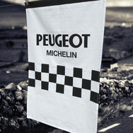 Peugeot_T-Towel