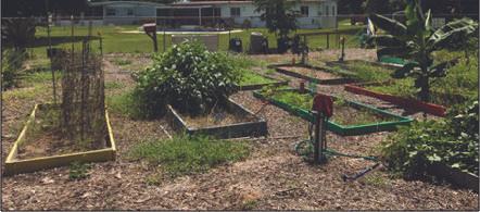 Orlando Parks Environmental Sustainability