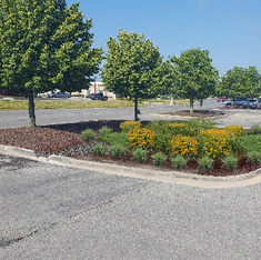 Big Box Retailer Green Infrastructure Design
