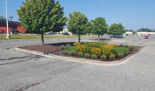 Green Infrastructure Design for Big-Box Retailer