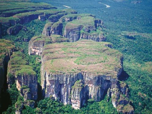 Culmina investigación en el Parque Natural Chiribiquete