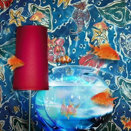 Aquarium Paper 6.mp4