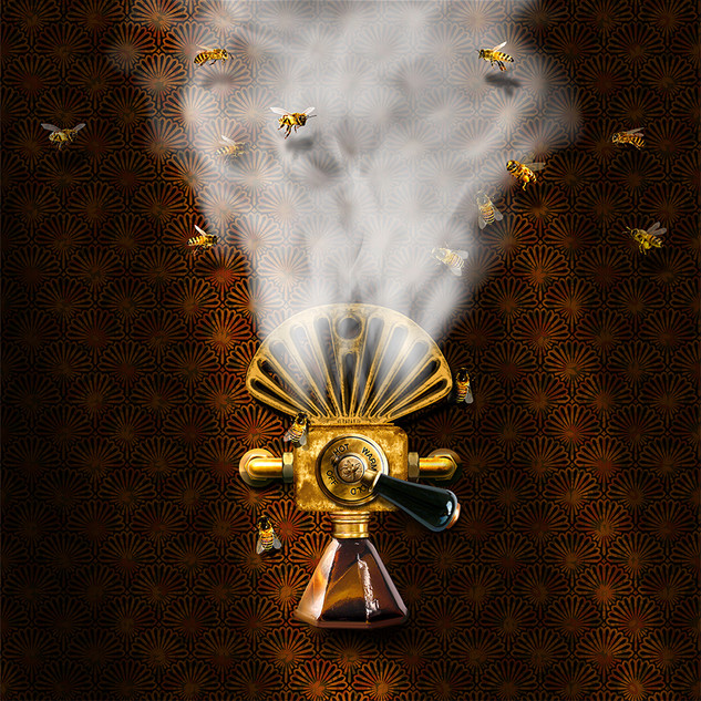 Bee Steamer