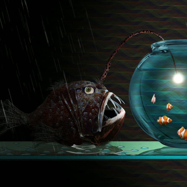 Goldfish.mp4