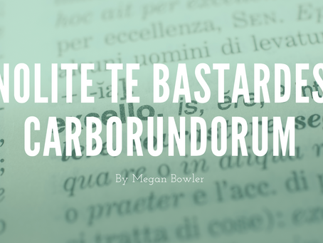 Nolite Te Bastardes Carborundorum - by Megan Bowler