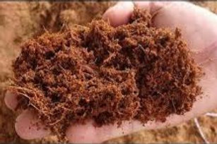 Peat Moss mix Vermiculite 10lt (Shipping 2 to 3 days)