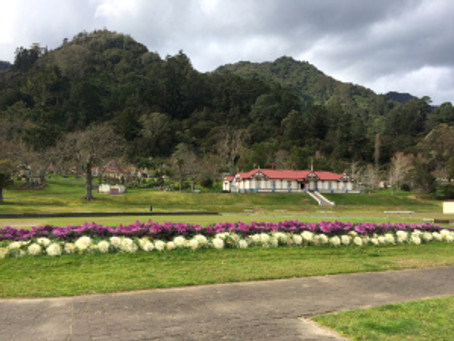Te Aroha – the mountain of love and a surprise Edwardian town in the Waikato