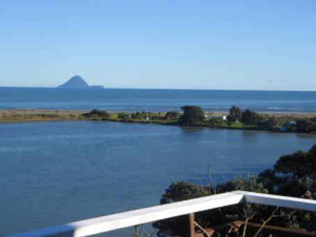 Whale Island in Bay of Plenty