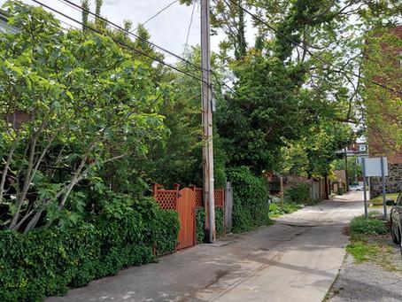 September Neighborhood Walk - Tuesday, 9/21