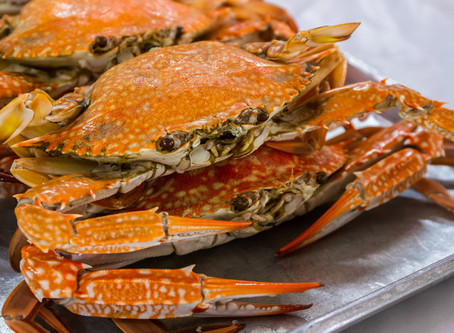 Crab feast tickets now on sale