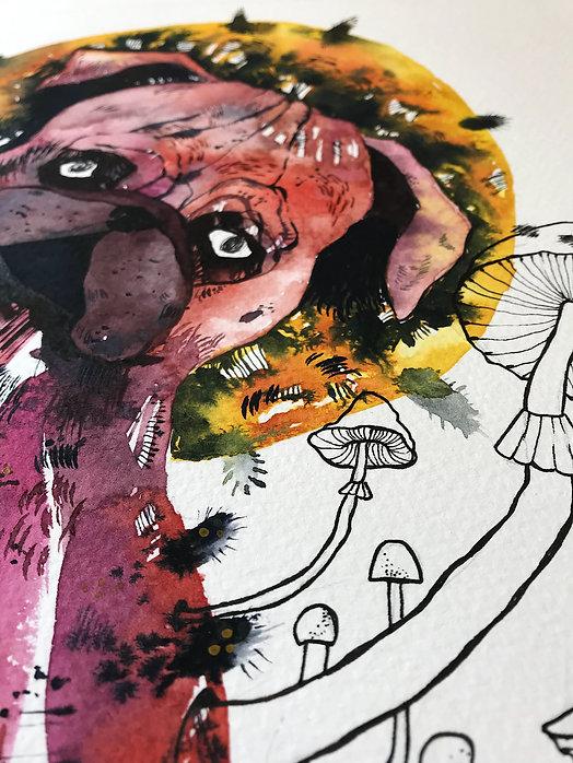 expressive watercolor painting watercolor pet portrait pet painting
