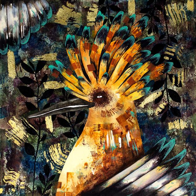 Golden Hoopoe