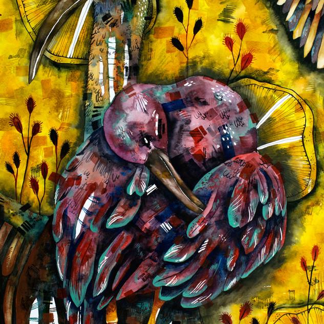 Glossy Ibis Dance