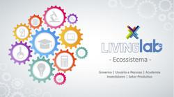 Eixos de atuação do Living Lab MS